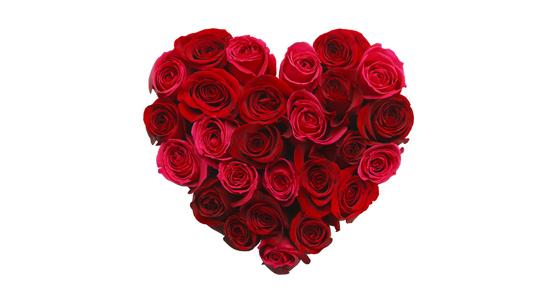 Bloemen Drive-in Eurotuin Valentijn