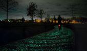 Het poëtische fietspad
