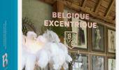 Belgique Excentrique: ode aan kitsch en kleur