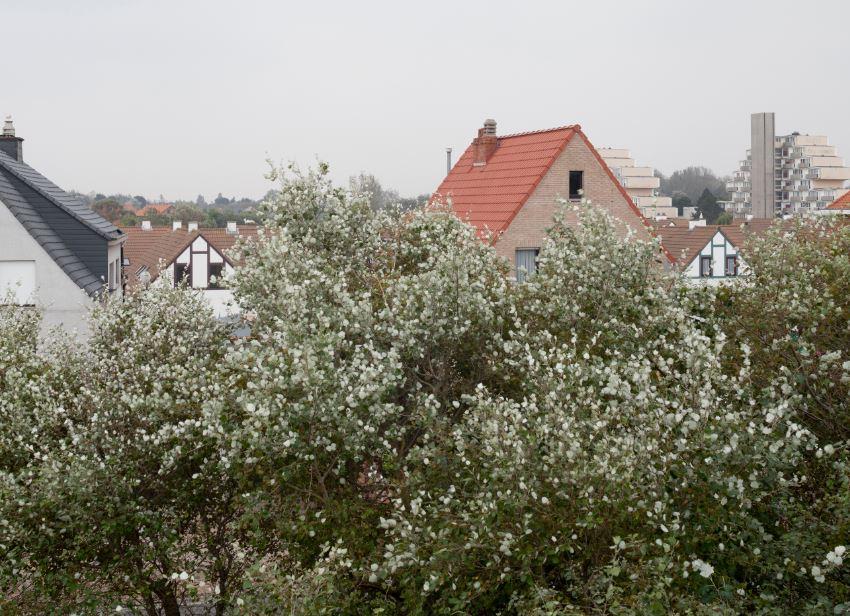 VAI Collecting Landscapes Driftweg Klemskerke 2014 ZNOR