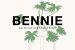 Bennie: frisse designpop-up met 12 jonge talenten