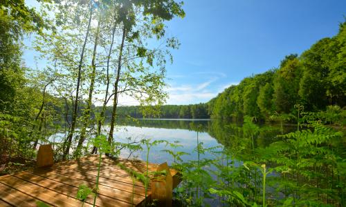 Logeren in een lodge of een lakehouse in… België