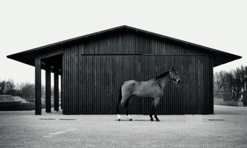 Vincent Van Duysen: meesterlijke eenvoud